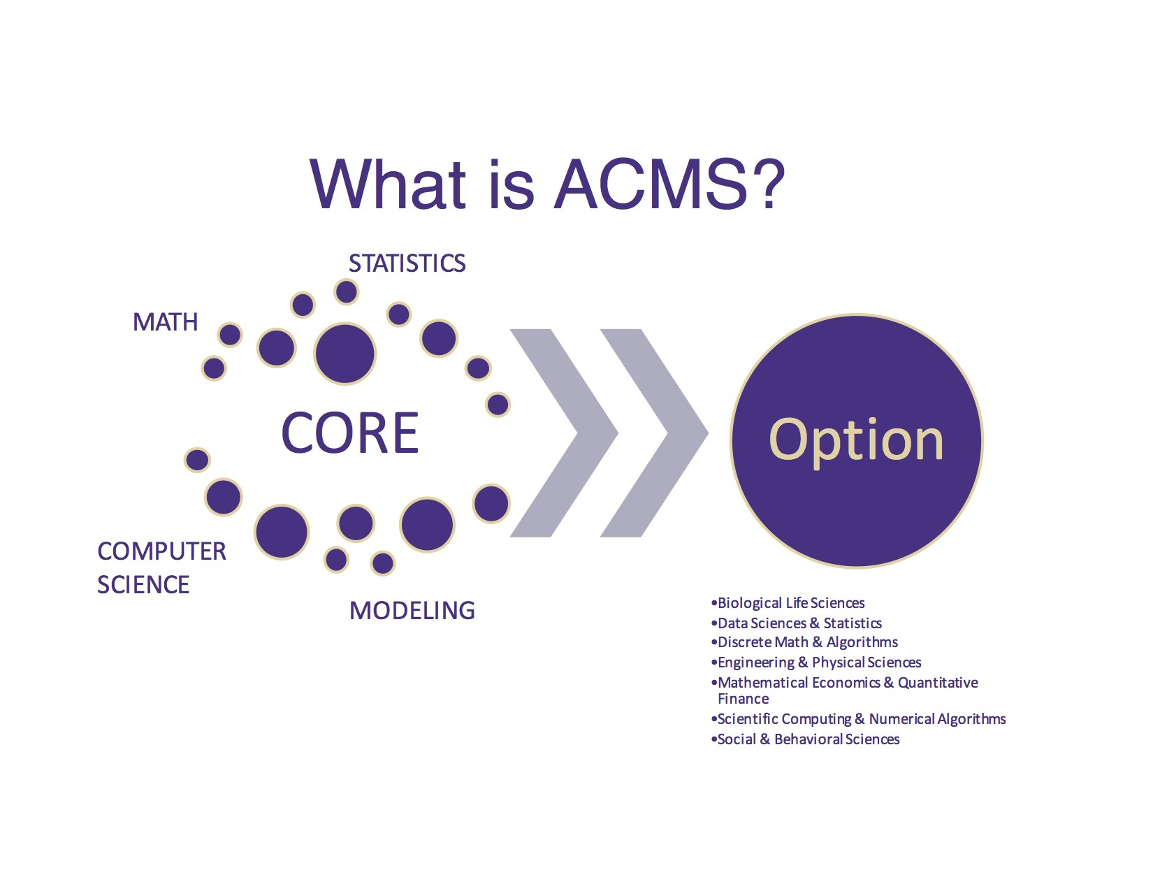 ACMS Info Session